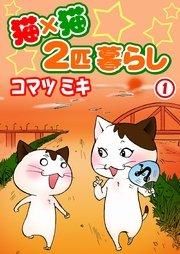 猫×猫 2匹暮らし