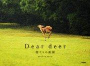 Dear deer 鹿たちの楽園
